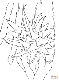 colouring pages of fruit trees printable fruit coloring pages