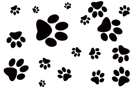 dog footprint free stock photo public domain pictures