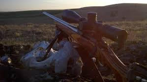 opinions on the 6 5 creedmoor let hear em 24hourcampfire
