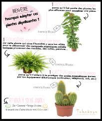 plante d駱olluante bureau plante dépolluante fashion designs