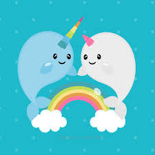 rainbow narwhals u003c3 cute drawings pinterest rainbows