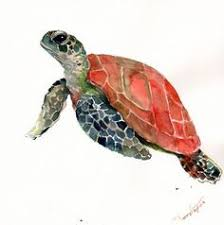 sea turtle watercolors and how to paint them pinterest