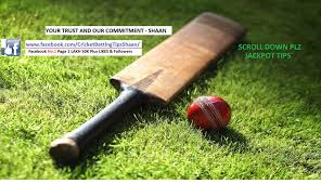 cricket betting tips free help online for punters to win big