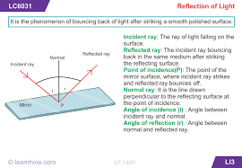 learnhive icse grade 7 physics reflection of light lessons