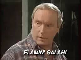 Alf Stewart Memes - urban dictionary stone the flamin crows