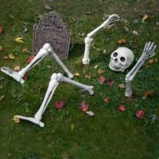 Skeleton Halloween Yard Decoration by Halloween Illumination Up From Down Under Light Up Skeleton Lawn