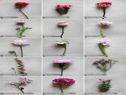 wedding flowers names 25 best flower names ideas on green wedding flower