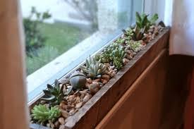 Diy Project Ideas Diy Project Ideas 23 Succulents Plants Indoor Wartaku Net