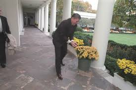 reagan oval office have you hugged a squirrel today pieces of history