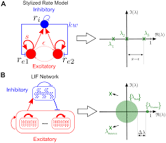 emergence of slow switching assemblies in structured neuronal networks