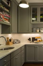 Kitchen Cabinets And Design English Roots Profile Cabinet And Design