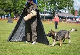 Dog Blinds Neumond K9 U2013 Co Schutzhund Club