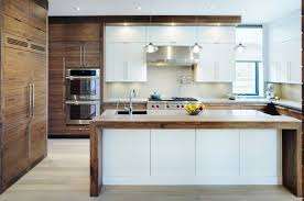 horizontal top kitchen cabinets trendy kitchen in oakville modern kitchen design kitchen