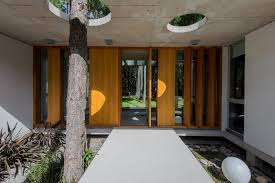 homes built around trees 13 creative examples the batin house is located in pinamar buenos aires on a lot surrounded by a pine forest with many of the pines spilling forth onto the lot itself