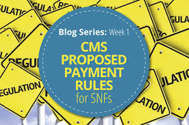 Rug Iv Classification System Blog Series Cms Proposed Payment Rules For Snfs Week 1