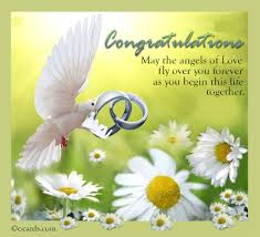 new marriage wishes pigeon and daisies card free congratulations ecards greeting