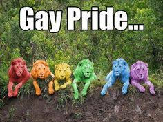 Gay Parade Meme - abigail badertscher smileforjoker12 on pinterest