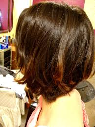 ponytail haircut technique how to hair girl ponytail techniques simple cuts and colors for