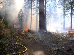 Bc Wildfire Act Regulations by California Forestry News Forest Research And Outreach