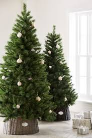 7ft christmas tree christmas decs 7ft forest pine christmas tree from next
