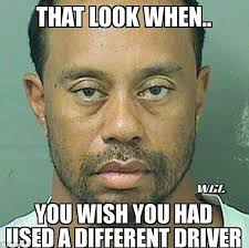 Game Blouses Meme - tiger woods mugshot gets the meme treatment daily mail online