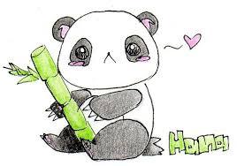 coloring outstanding drawings panda d3goy58 coloring