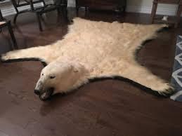 Polar Bear Fur Rug Bear Rug Kijiji In Ontario Buy Sell U0026 Save With Canada U0027s 1