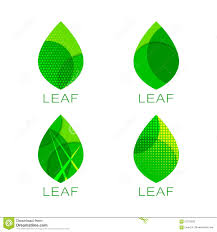 set of four green leaf template stock vector image 57279032