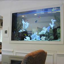 Home Aquarium Decorations I Want A Fish Tank In The Wall Of The Kitchen And Living Room