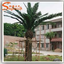 5 years time of artificial outdoor palm trees pots wholesale