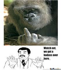 Funny Gorilla Meme - badass gorilla by smoushy meme center
