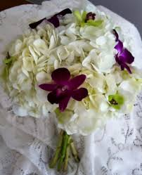 White Hydrangea Bouquet White Hydrangea Bouquet With Purple U0026 Green Dendro Orchids