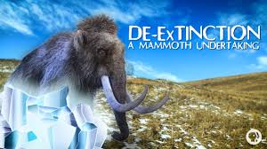 mammoth undertaking science extinction