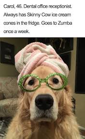 Dog With Glasses Meme - a dump of dogs with bios album on imgur