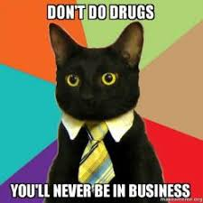 Don T Do Drugs Meme - don t do drugs you ll never be in business business cat make a