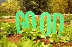 Urban Gardens San Francisco - top 10 us cities for planting an urban garden now inhabitat
