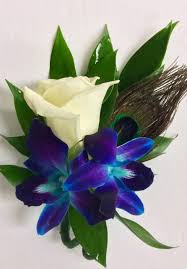 orchid boutonniere bomb blue orchid and white boutonniere with peacock feather