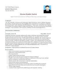 resume formatting software qa tester resume sles tester resume sles tester software