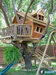 Tree House Home How To Build A Treehouse Tree Houses Pulley And Buckets