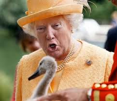 Queen Of England Meme - the best donald trump and queen of england photoshops album on imgur