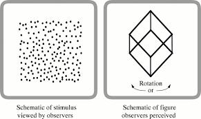psychoanatomical substrates of bálint u0027s syndrome journal of