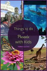 Arizona traveling with toddlers images Best 25 phoenix things to do ideas phoenix arizona jpg