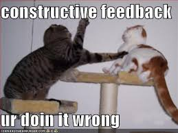 Cat Fight Meme - funny cat fight 1 free hd wallpaper funnypicture org
