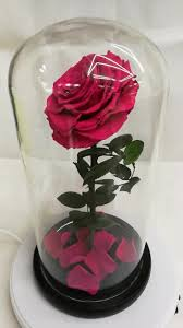 forever roses wholesale natural preserved roses flowers in glass dome forever