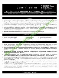 Professionally Done Resumes Professional Chronological Resume Format Editing Resume Editing