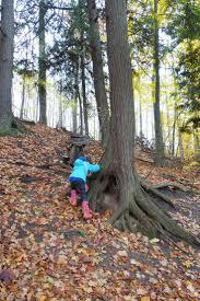 98 best traverse city fairy trails images on pinterest traverse