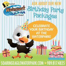 soaring eagle waterpark and hotel 125 photos u0026 51 reviews