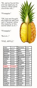 Ananas Pineapple Meme - i said pineapple and it s final finals humor and hilarious