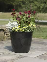 Planters On Wheels by Large Flower Pots Plastic Rolling Viva Self Watering Planters