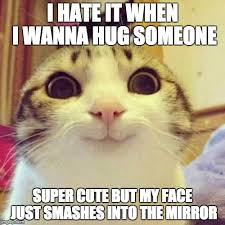 Cat Hug Meme - smiling cat meme imgflip